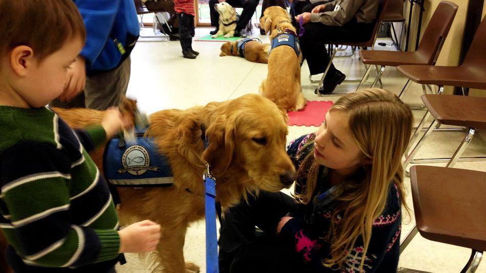 Un grupo de perros ejercen de psicólogos tras la mantanza de niños en Newtown