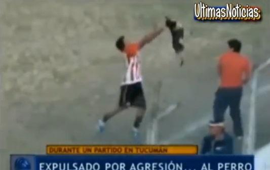 Expulsan a un futbolista que lanzó a un perro contra la tribuna durante un partido de fútbol