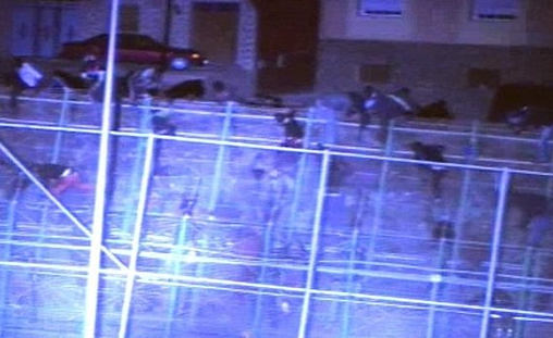 Asalto masivo de inmigrantes a la valla fronteriza de Melilla