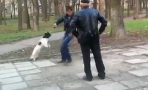 Un hombre borracho defiende a su pequeño perro después de que otro joven, también borracho, agrediera al animal