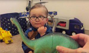 noel-dinosaurios
