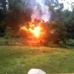 Esto es lo que pasa cuando un árbol cae en un cable de alta tensión