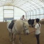 Demostración de como nunca debes montarte en un caballo