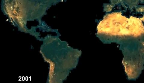 La deforestación del Amazonas vista en timelapse gracias a Google