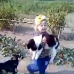 Una niña pequeña salva a su gato de su perro enloquecido