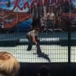 Un caimán muerde el brazo de su ''entrenador''