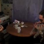El gato armónica