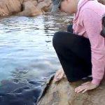 Una mujer alimenta y acaricia a un grupo de rayas salvajes