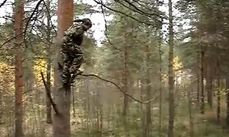 Cómo no saltar desde un árbol