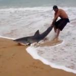 Un hombre ayuda a volver al mar a un tiburón varado en la arena de la playa