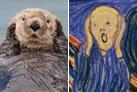 Una nutria imita la obra de ''El grito'' del famoso Edvard Munch