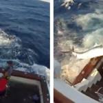 Unos pescadores intentando subir al barco a un marlín