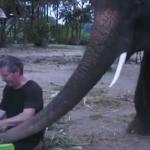 Tocando el piano con un elefante
