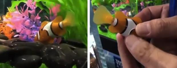 Robofish, peces robots en la feria del juguete de Tokio