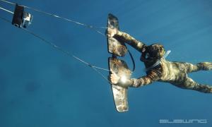 Subwing, volando debajo del agua