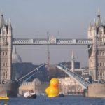 pato amarillo gigante londres