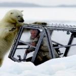 El increíble encuentro entre el fotógrafo de la BBC Gordon Buchanan y un oso polar hambriento