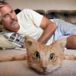 Un taxidermista neozelandés vende una alfombra de gato por cerca de 1.000 dólares