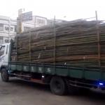 ¿Necesitas ayuda para descargar el camión?