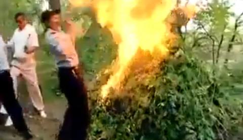 Esto es lo que ocurre cuando intentas quemar marihuana