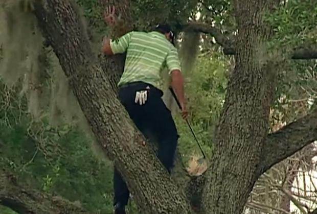 El golfista Sergio García se subió a un árbol para golpear la bola durante el torneo Arnold Palmer International