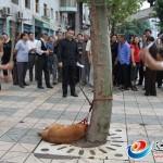 """Dos """"hombres"""" chinos apalean hasta la muerte a un perro atado a un árbol en plena calle"""
