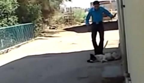 Asusta al perro y casi acaba con un mordisco
