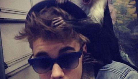 Agentes de Aduana decomisan a Justin Bieber un mono capuchino en el Aeropuerto de Munich