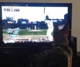 Esto es lo que ocurre cuando tienes a tu perro muy acostumbrado a lanzarle pelotas