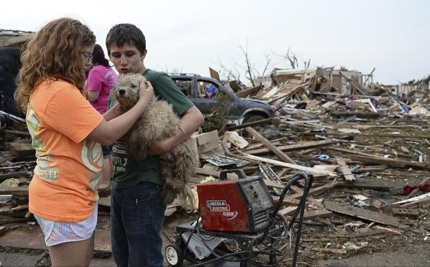 Decenas de animales han sido rescatados después del tornado de Oklahoma