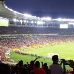 Todo el estadio Maracaná gritando: ''El pueblo unido jamás será vencido''
