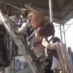 Pakistán: Cómo subir a un burro al techo de un autobús