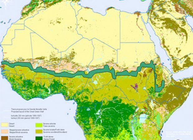 Empieza la construcción de la Gran Muralla Verde de África