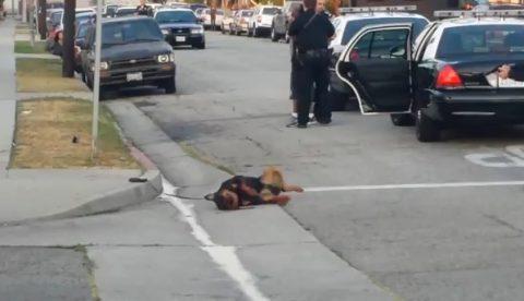 El policía que mató a tiros a un perro, mató hace años a un hombre con síndrome de down
