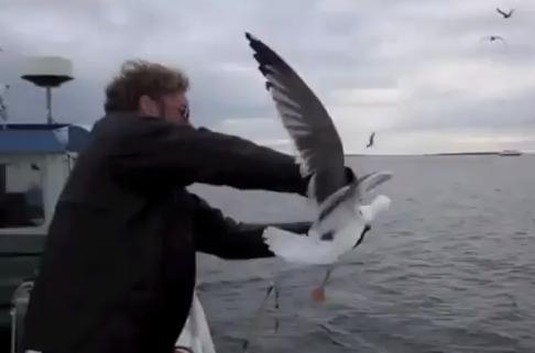 Un pescador atrapa una gaviota en pleno vuelo