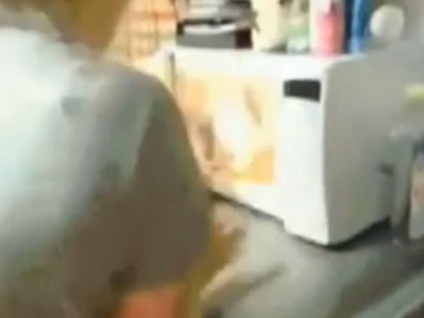 Dos adolescentes se enfrentan a cargos judiciales por meter a un gato dentro de un microondas