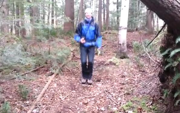 Cama elástica natural en mitad del bosque