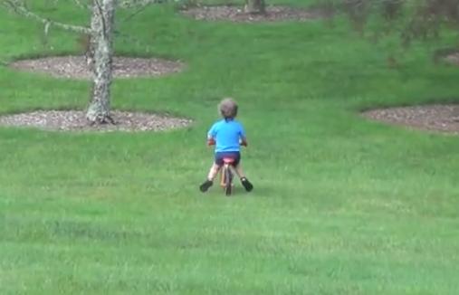 Un padre se parte de risa al ver como su hijo se come un árbol