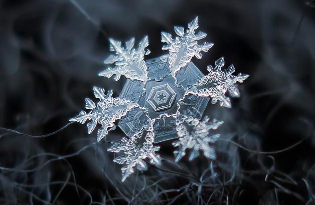 La increíble belleza de los cristales de hielo captada por un fotógrafo aficionado