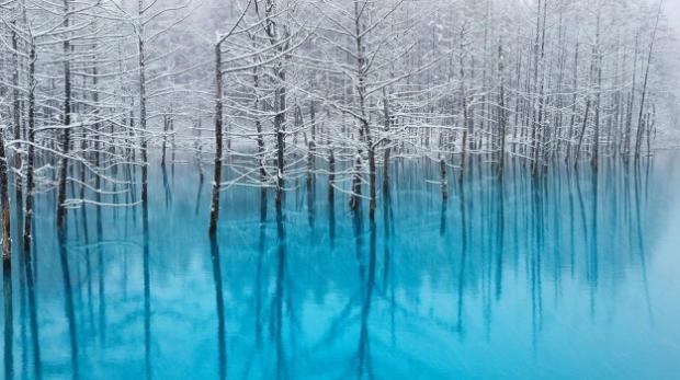 El estanque que cambia de color dependiendo de la estación del año