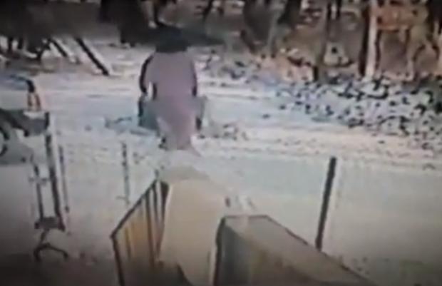 Un gato se lanza a la cabeza de una mujer que le tiraba nieve con el pie (Vídeo)