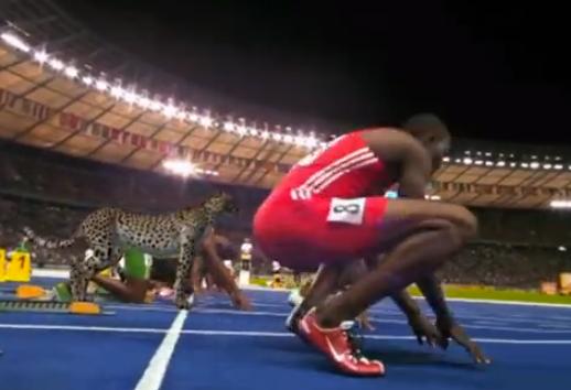 NatGeoWild recrea como sería una carrera de 100 metros entre un guepardo y Usain Bolt