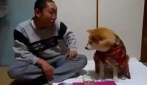 Este perro no permite que su dueño beba alcohol