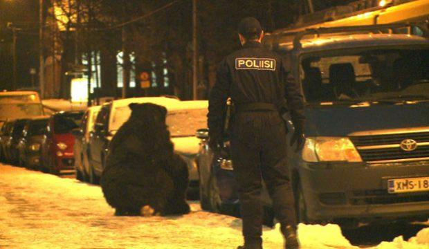 Policía: ''Hay un tipo en un traje de oso...''