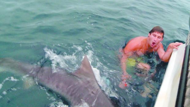 Bucear entre tiburones con ¿una jaula de pájaros?