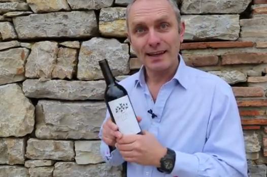Cómo sacar un corcho de una botella de vino
