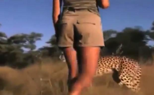 Mujeres caminando entre leones y guepardos en África
