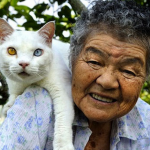 Misao Ihara y Fukumaru, la hermosa historia de una anciana y su gato en 19 fotografías