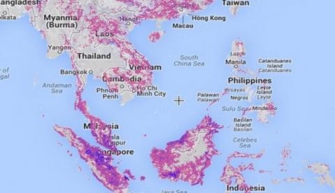 El drama de la deforestación en un mapa