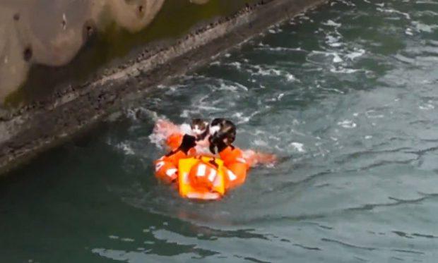 Rescate de un gato de debajo de un ferry en Suecia